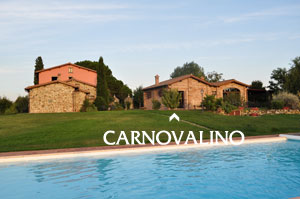 Farmhouse in Tuscany: Apartment with pool to let for holidays in Italy.
