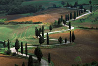 Val d'Orcia: Places to visit in Tuscany for people staying in the farm holidays